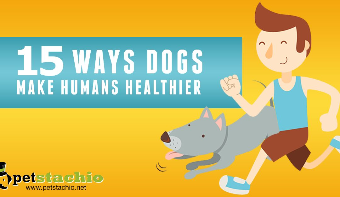 15 Ways Dogs Make Humans Healthier