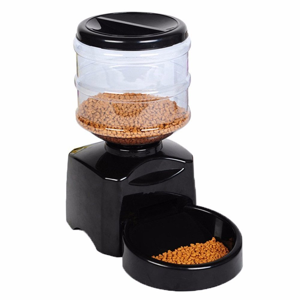 dog with feeder feeders automatic meal timers petsafe complete of best reviews table
