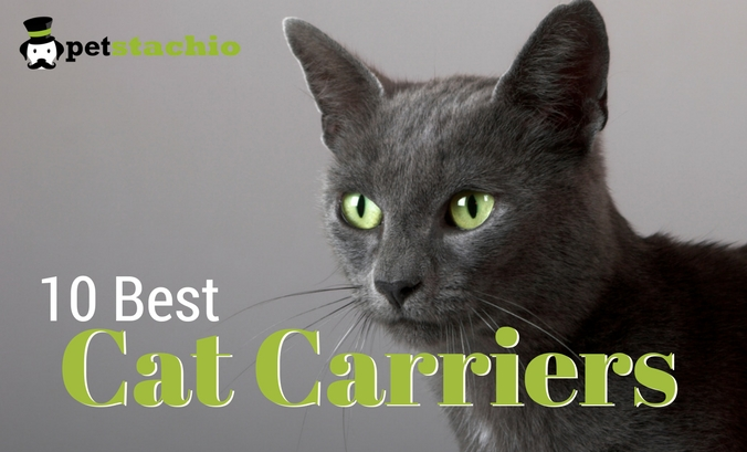 10 Best Pet Carriers