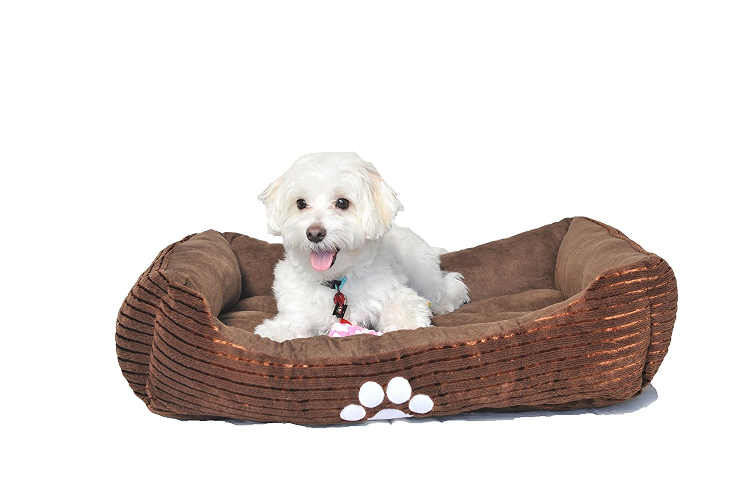 3.-HappyCare-Textiles-Reversible-Rectangle-Pet-Bed-with-Dog-Paw-Printing-Medium-size 10 Best Dog Beds for Small Dogs