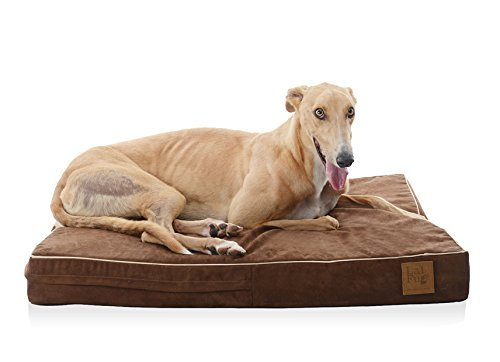 6.-LaiFug-Orthopedic-Memory-Foam-PetDog-Bed-with-Durable-Water-Proof-Liner-and-Removable-Designer-Washable-Cover 10 Best Beds for Large Dogs