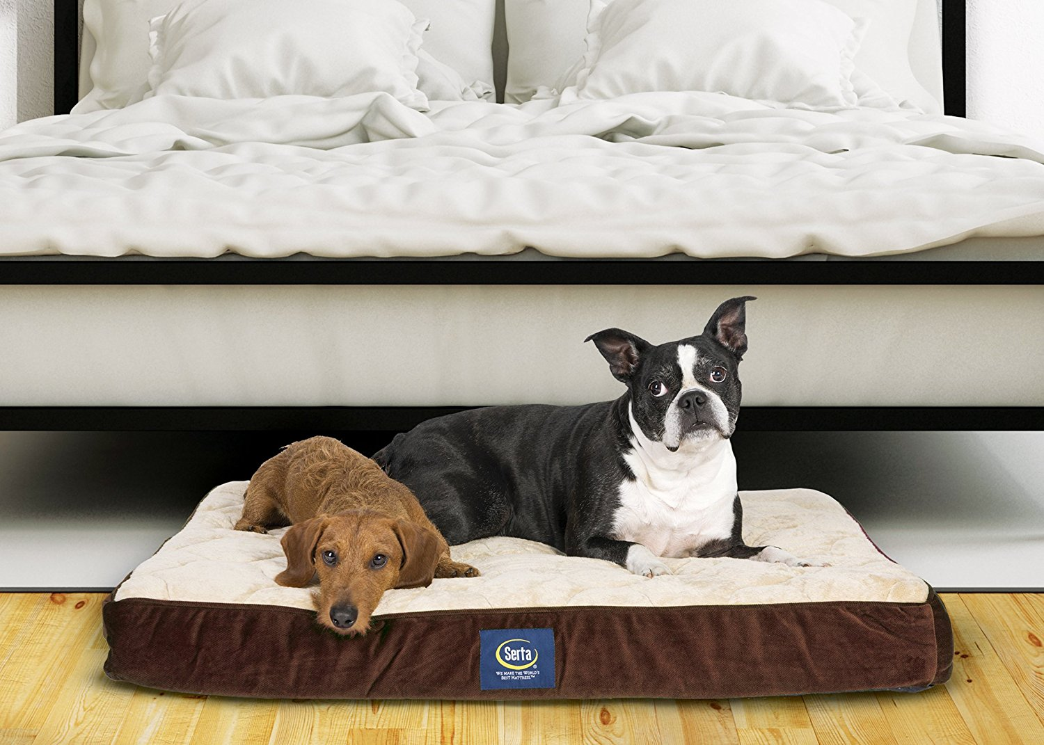 7.-Serta-Orthopedic-Quilted 10 Best Beds for Large Dogs