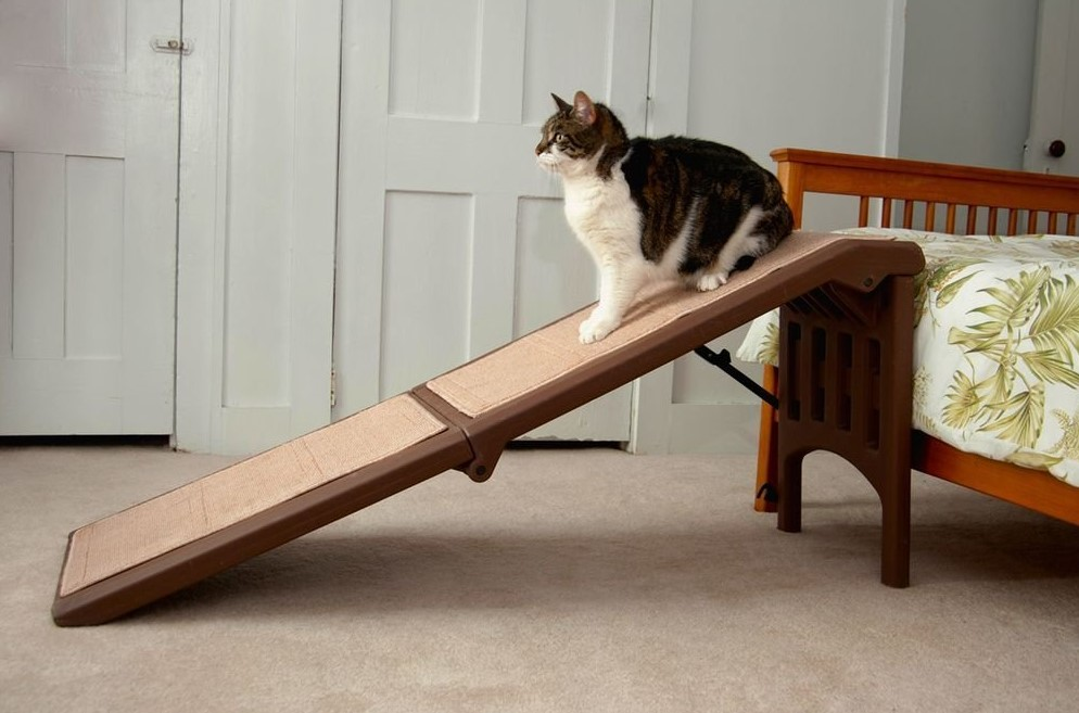 Pet-Gear-Free-Standing-Ramp-for-Cats-and-Dogs.-Great-for-SUV's-or-use-Next-to-your-Bed.-4-Models-to-Choose-from-Supports-200-300-lbs-Lightweight-Easy-Fold-Design-1 10 Best Pet Ramps