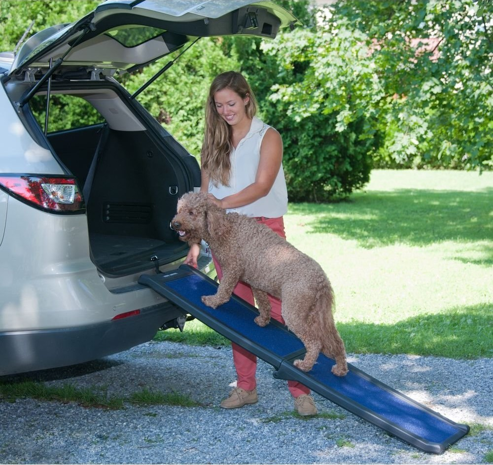 Pet-Gear-Travel-Lite-Bi-Fold-Half-Ramp-for-cats-and-dogs 10 Best Pet Ramps