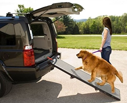 Pet-Gear-Tri-Fold-Ramp-71-inch-Extra-Wide-Pet-Ramp-Holds-200LBS-1 10 Best Pet Ramps