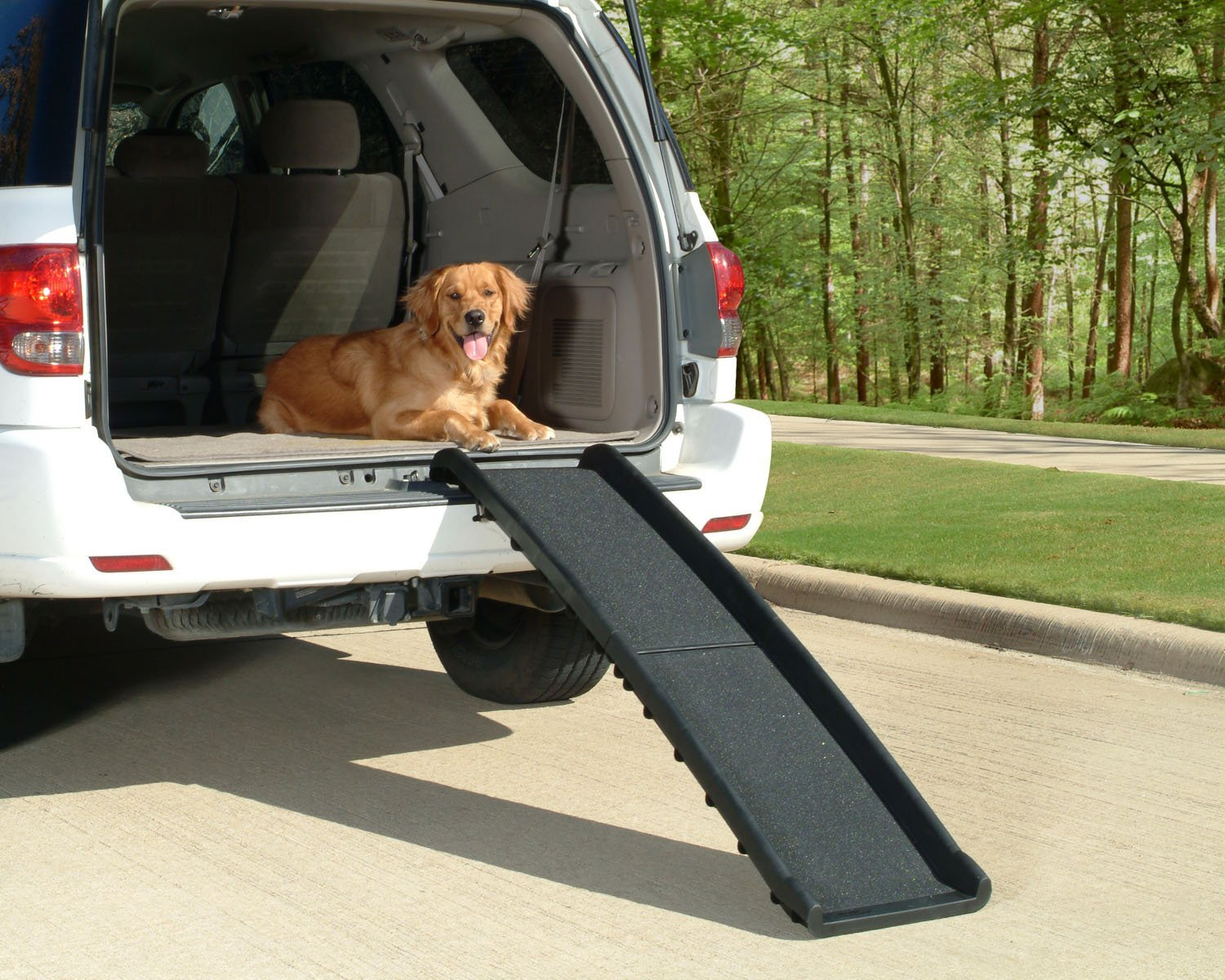 PetSafe-Solvit-UltraLite-Bi-Fold-Pet-Ramp-62-in.-Portable-Lightweight-Dog-and-Cat-Ramp-Great-for-Cars-Trucks-and-SUVs 10 Best Pet Ramps